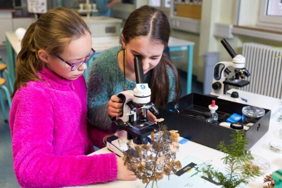 Schülerinnen mikroskopieren